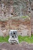 帕勒泰恩小山的古老废墟在罗马。 免版税库存图片