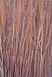 帕多瓦现代金属雕塑细节安东尼奥Ievolella (2005) 库存图片