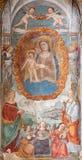 帕多瓦-有孩子的玛丹娜博尼诺da Campione (14 分 ) 在Eremitani的教会里 库存照片