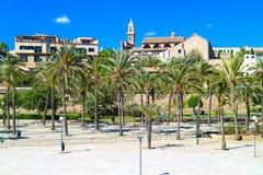 帕尔马,西班牙 有棕榈树的中央公园在su 免版税图库摄影