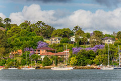 帕拉马塔河视图,悉尼郊区房子 图库摄影