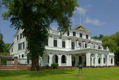 帕拉马里博总统宫殿 免版税库存照片