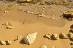 帕福斯海滩在塞浦路斯 图库摄影