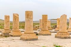 帕萨尔加德考古学站点 图库摄影