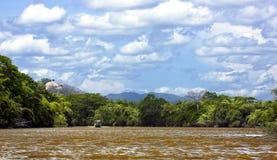 帕洛弗迪国家公园在哥斯达黎加 库存照片