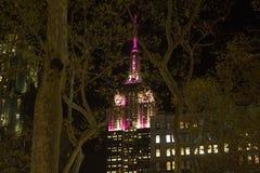 帝国大厦圣诞节纽约 库存照片