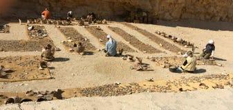 帝王谷卢克索埃及考古学家与史前瓦器碎片证明和汇编一起使用 免版税库存照片