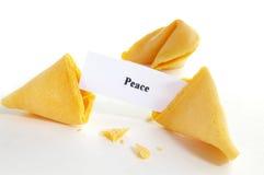 带来和平 免版税库存图片