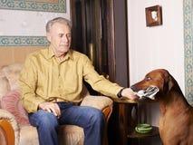 带来狗报纸 免版税库存照片