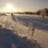 带来的边缘沼地雪木头 免版税库存照片