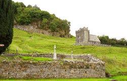 带状闪长岩细胞在古老爱尔兰 免版税库存图片