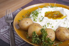 带皮烤的土豆用凝乳和亚麻仁油 库存图片
