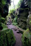 带领入洞洞穴的步 免版税库存照片