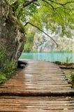 带领向绿色透明wat的湿木甲板看法  免版税库存照片
