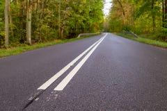 带领在地方路的落叶林水平的标志的柏油路 图库摄影