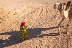 带领在沙漠的小女孩一头骆驼在洪加达,埃及附近 库存图片