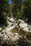 带领横跨石头和河的一条困难的道路 免版税库存图片