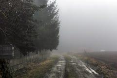 带领通过一个小村庄的篱芭的一条泥泞的领域道路入涌现从薄雾的森林 免版税图库摄影