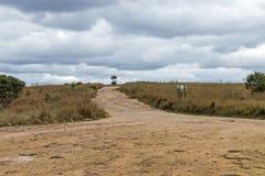 带领通过干燥冬天草原的空的农村土路 免版税库存照片