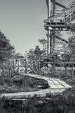 带领通过冻沼泽的木足迹在拉脱维亚 库存照片