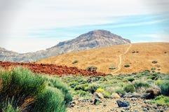 带领通过teide国家公园的道路在特内里费岛 库存图片