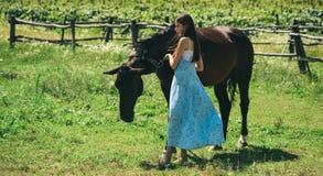 带领马 有马的年轻女人在夏天风景 交充满马、友谊和爱的朋友 相当 库存图片