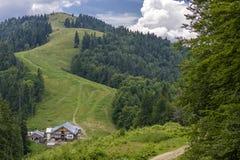 带领从Grabova瑞士山中的牧人小屋的冷杉森林之间的Ountain道路 免版税库存图片