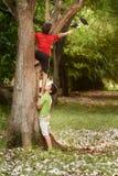 帮助和上升在树的两个孩子在公园 免版税图库摄影
