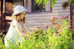 帮助小花匠儿童的女孩整理和被切开的spirea灌木在夏天庭院里 库存图片