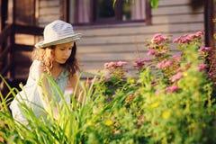 帮助小花匠儿童的女孩整理和被切开的spirea 库存图片