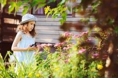 帮助小花匠儿童的女孩整理和被切开的spirea 库存照片