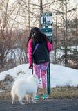 帮助您的爱犬废物驻地 免版税库存照片