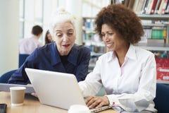 帮助有研究的老师成熟学生在图书馆里 免版税库存照片