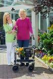 帮助资深妇女的护士走与步行者 免版税库存图片