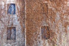 常春藤墙壁意大利人农舍 库存照片