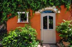 常春藤穿在五颜六色的房子里 免版税库存照片