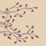 常春藤藤剪影,叶子的典雅的紫色花卉装饰旁边边界设计元素,俏丽的婚礼邀请设计 向量例证