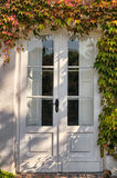常春藤覆盖的门 库存照片