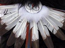 常见的羽毛 库存图片