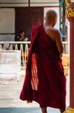 常设红色修士从后面在缅甸缅甸 免版税库存照片