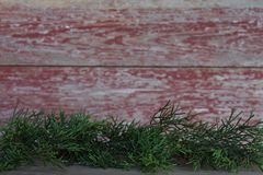 常青叶子有红色谷仓板背景 免版税库存图片