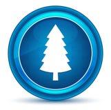 常青针叶树松树象眼珠蓝色圆的按钮 皇族释放例证