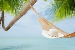 帽子和棕榈 库存照片
