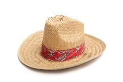 帽子墨西哥 库存照片