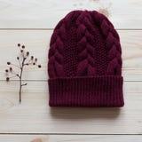 帽子手动地跳起深红羊毛在红色莓果的枝杈附近 库存图片