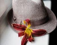 帽子末端花红色黄花菜白色窗口 图库摄影