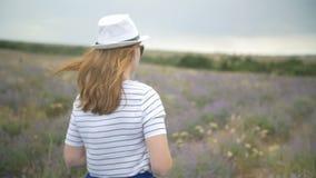 帽子的女孩在淡紫色领域走 股票视频