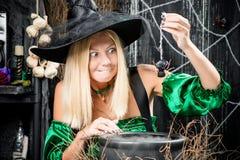 帽子的巫婆拿着在罐的一只蜘蛛 免版税库存照片