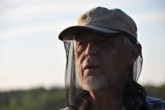 帽子蚊子 库存图片