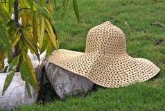 帽子XIV 库存照片